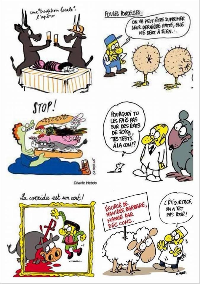 Dessins de Charlie Hebdo