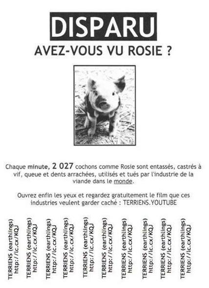 Annonce : avez-vous vu Rosie ?