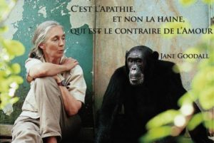 Citation Jane Goodall