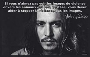 Citation Johnny Depp