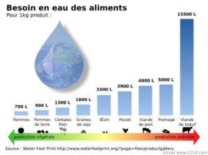 Besoins en eau des aliments végétarien vegan