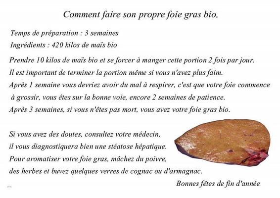 Foie gras bio