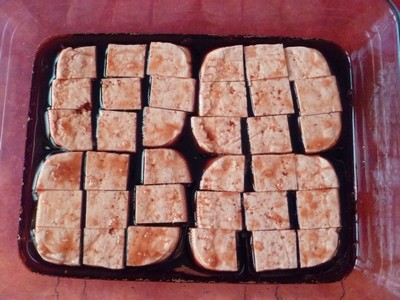 Tofu mariné