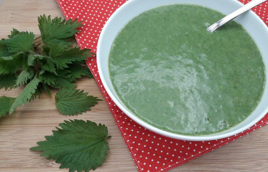 http://www.recettes-vegetariennes.com/recettes/soupes/soupes-mixees/soupe-aux-orties/
